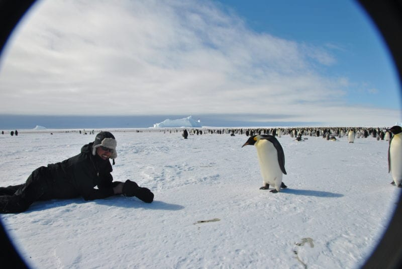 Antarctica Penguin Encounter Landscape