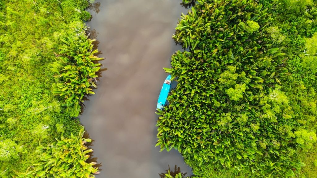 boat on river flowing through jungle borneo