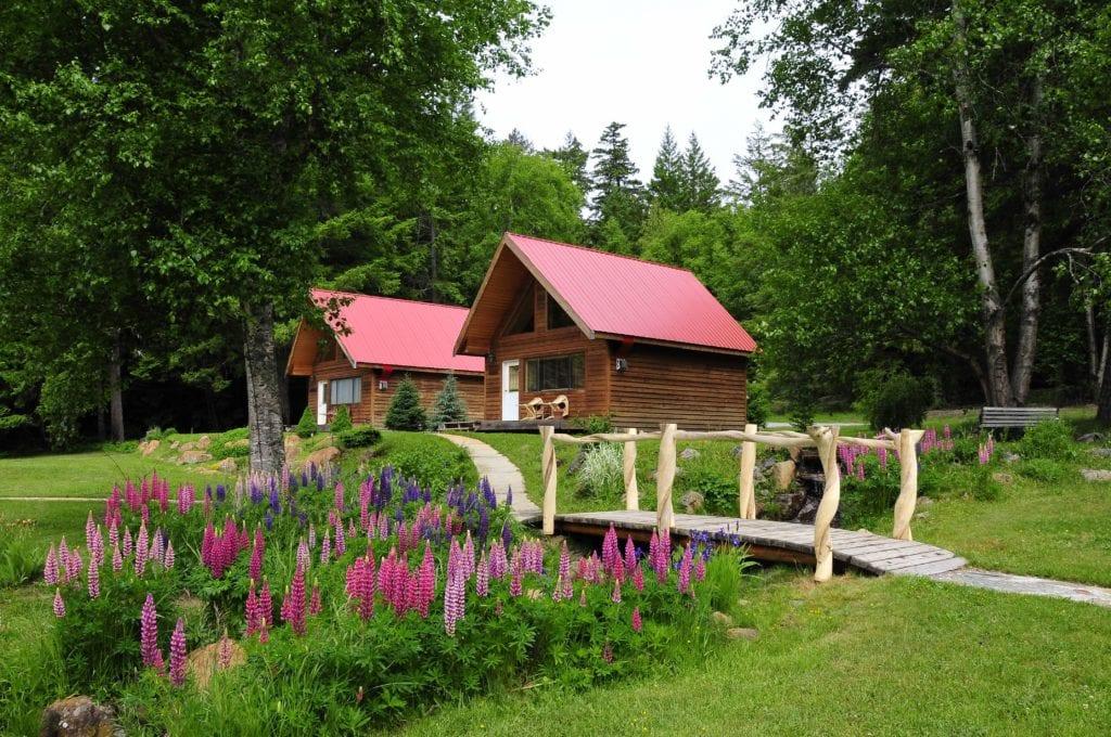 Canada Tweedsmuir Park Lodge cabins