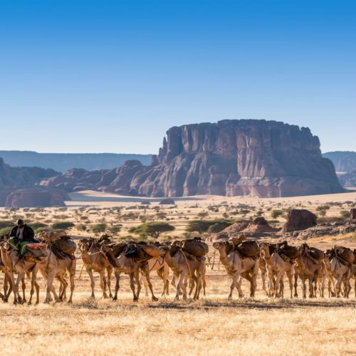Remote Deserts & Secret Safaris of Chad