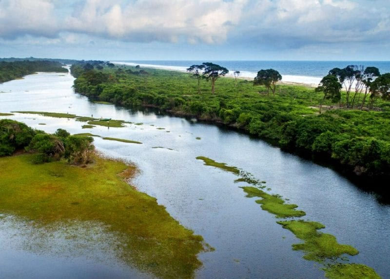 Gabon's expansive natural beauty meets the Atlantic Ocean