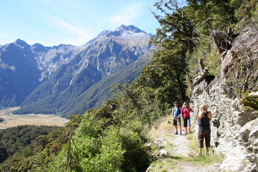 hiking new zealand mountains