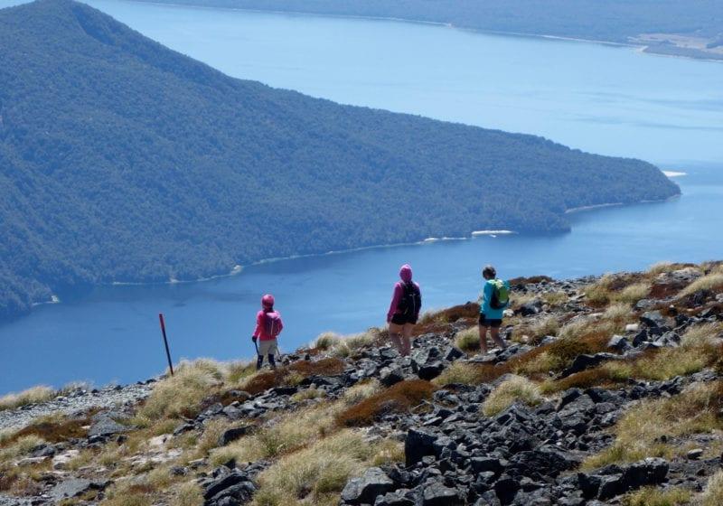 hiking new zealand pelorus