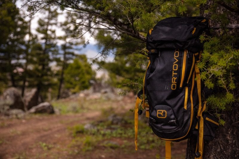 hiking rucksack hung up in some woodland