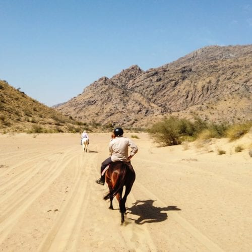 India Horseback Adventure hero