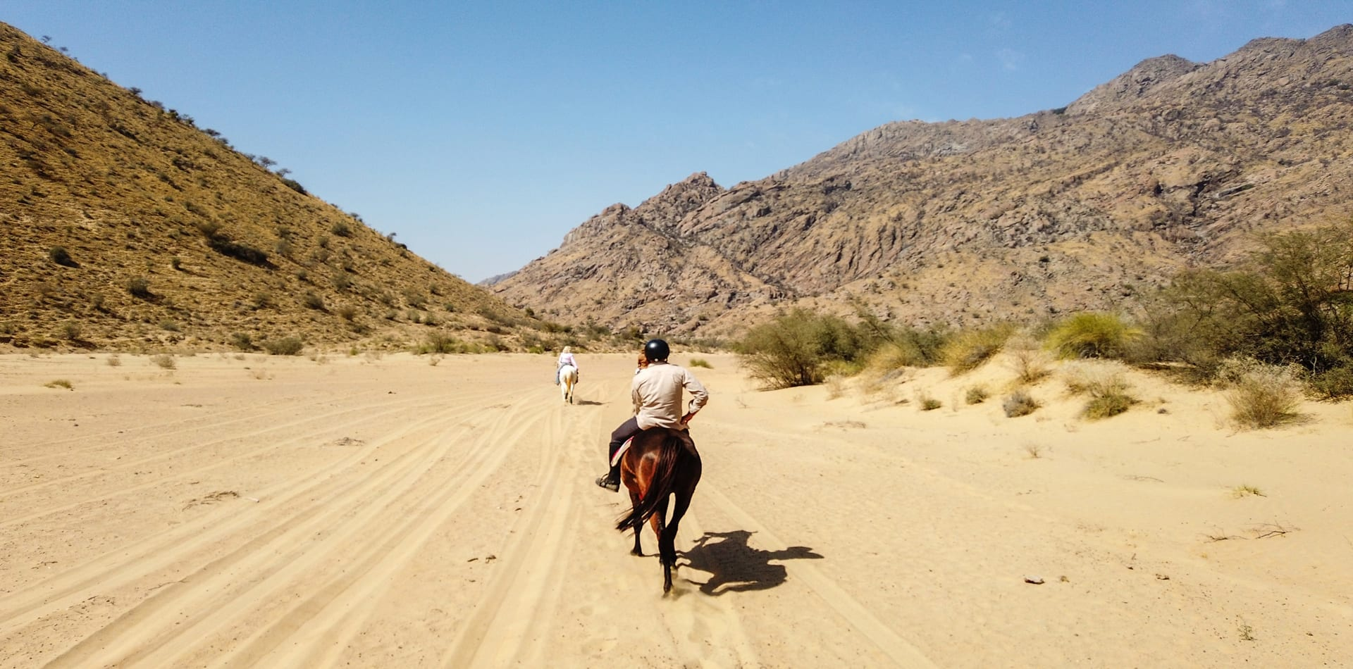 India Horseback Adventure hero
