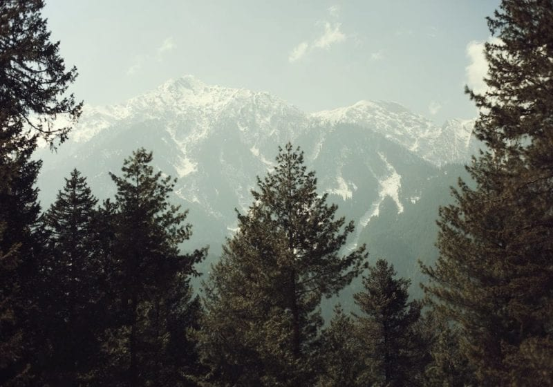 Forrest lined snow-capped mountains