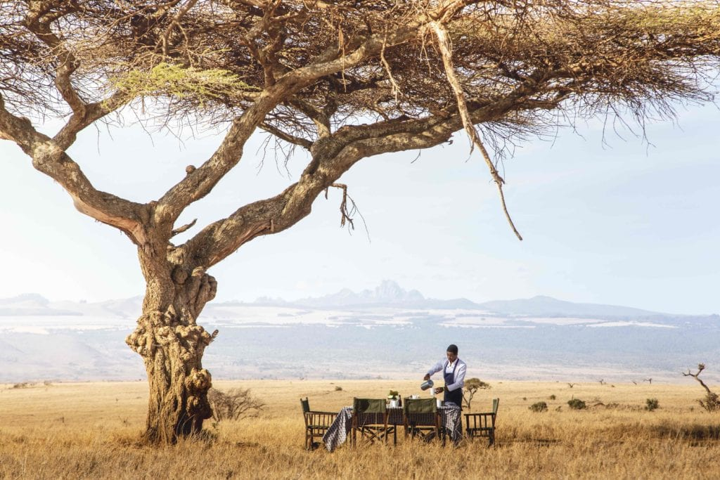 bush breakfast lewa wilderness kenya