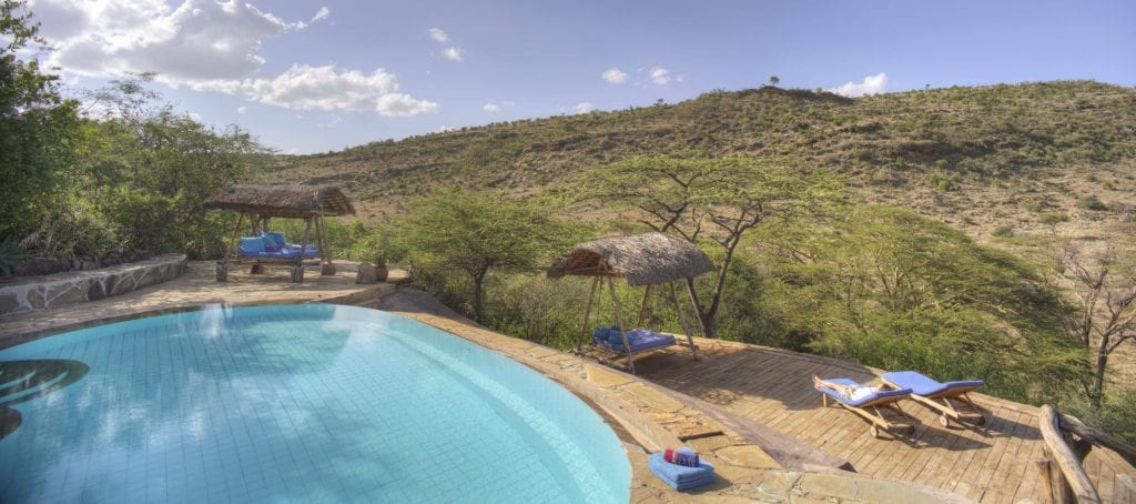 swimming pool lewa wilderness kenya