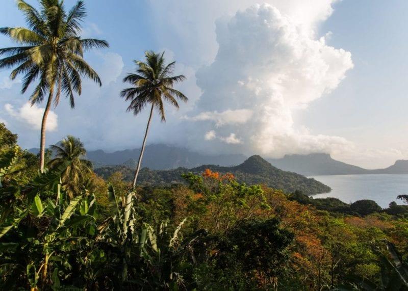 Sao Tome palm tree lined Island