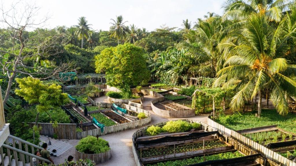 garden soneva fushi maldives