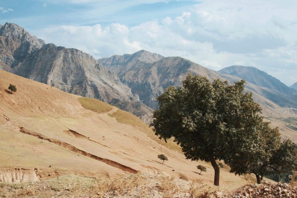 Uzbekistan desert with mountains backdrop