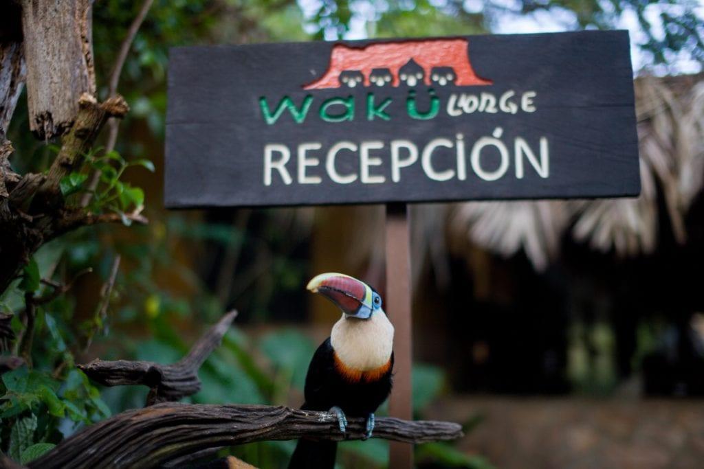 reception sign toucan wakü lodge