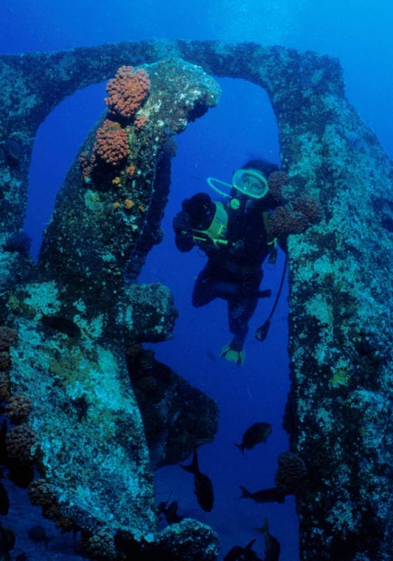 Diver taking pictures of tropical coral on a shipwreck