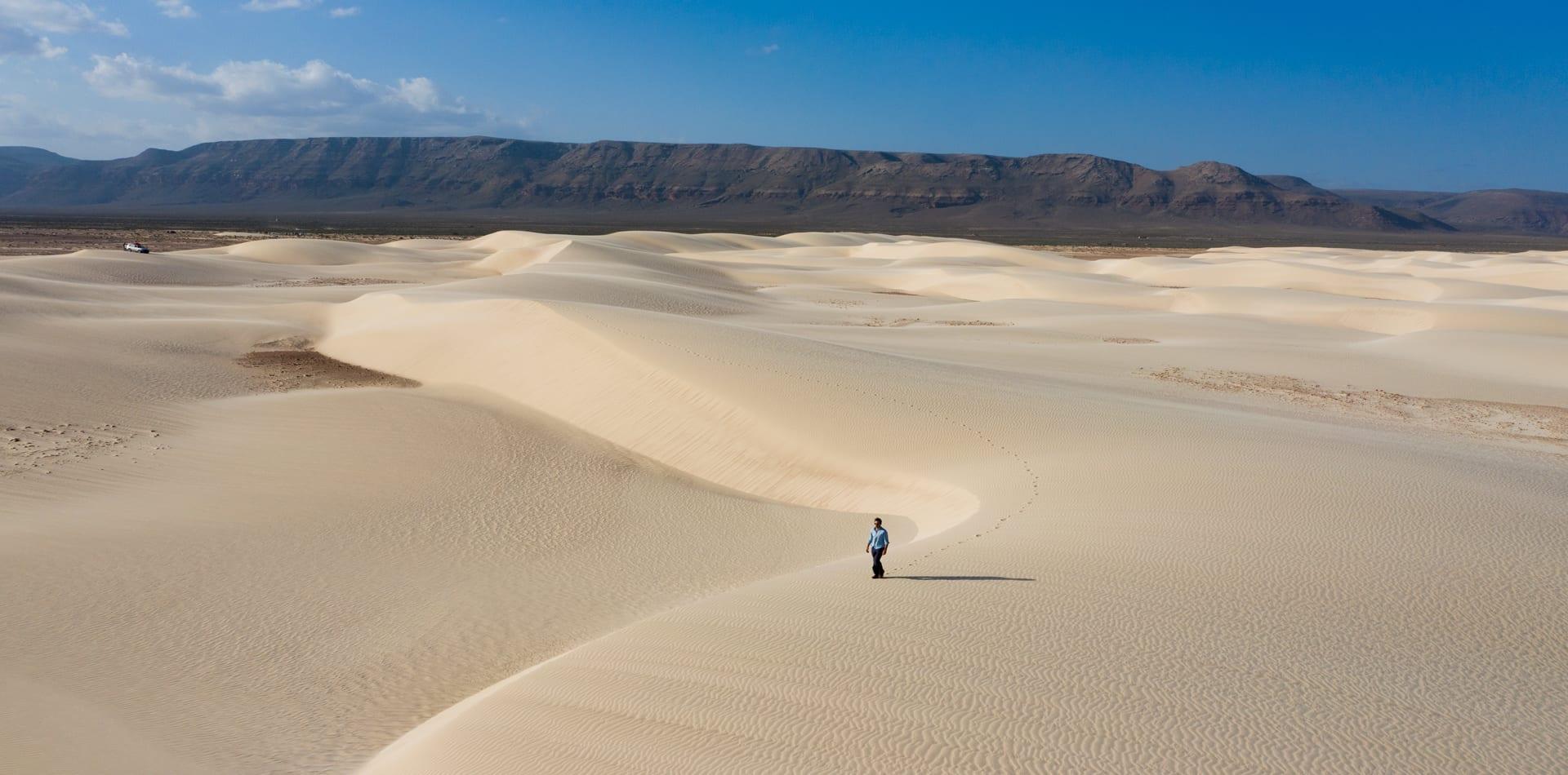 Socotra's deceiving desert landscape hides exotic flora and fauna