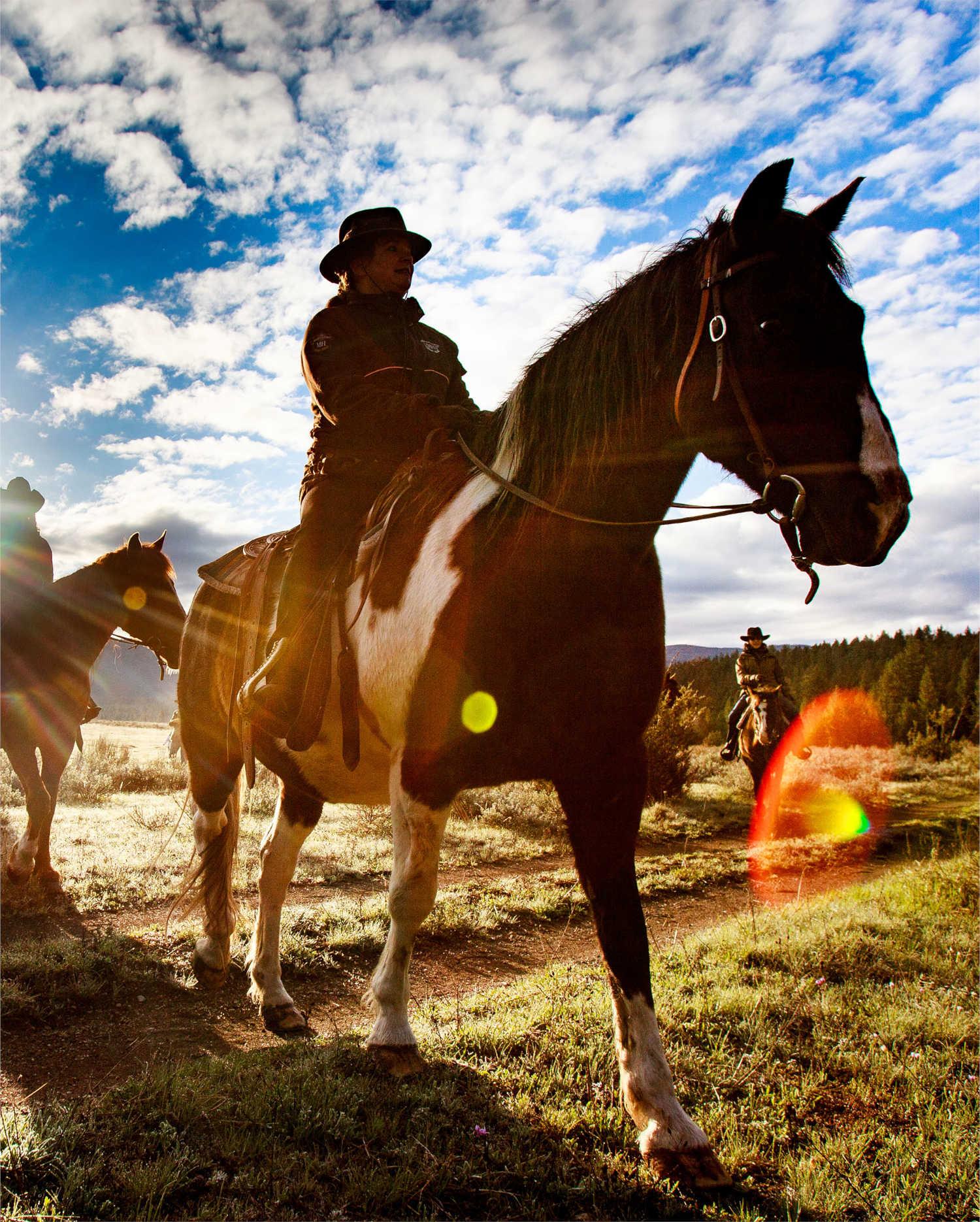 Horse rider in Montana, USA