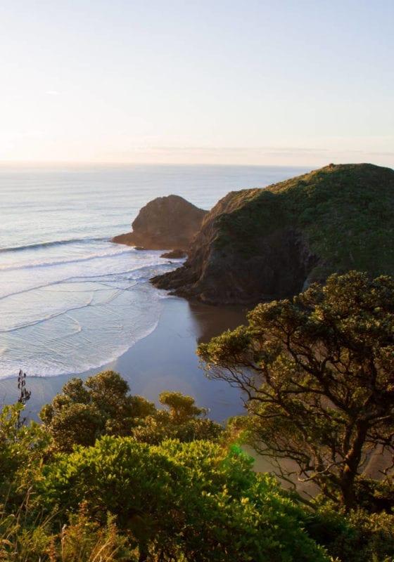 Beautiful coastline of New Zealand