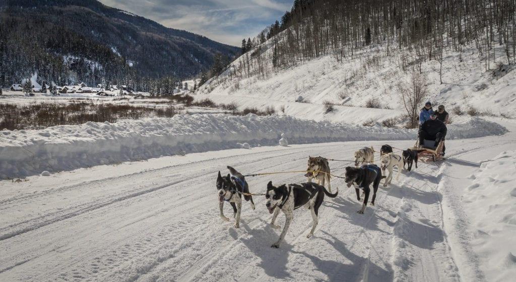 Dog Sledding from Dunton Hot Springs in the Mountain Snow Colorado USA