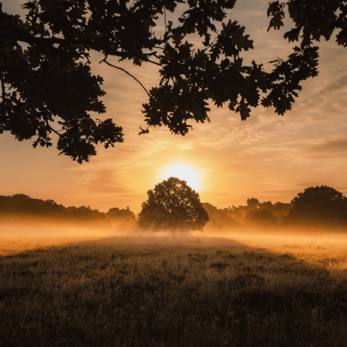 Countryside Sunrise England