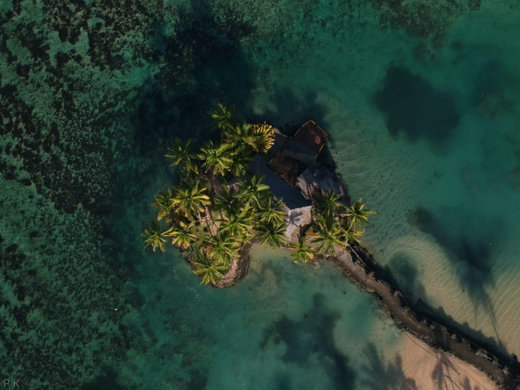 Forested Palm Island in Fiji