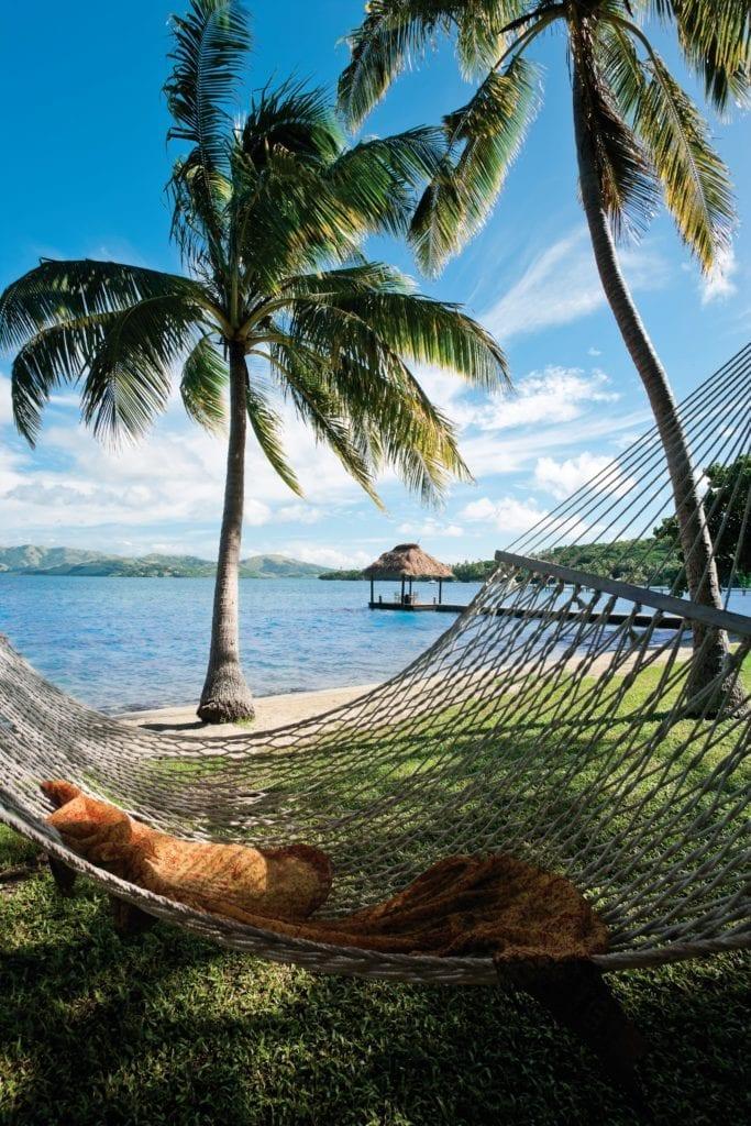 Hammocks and Palm Trees at Dolphin Island Fiji