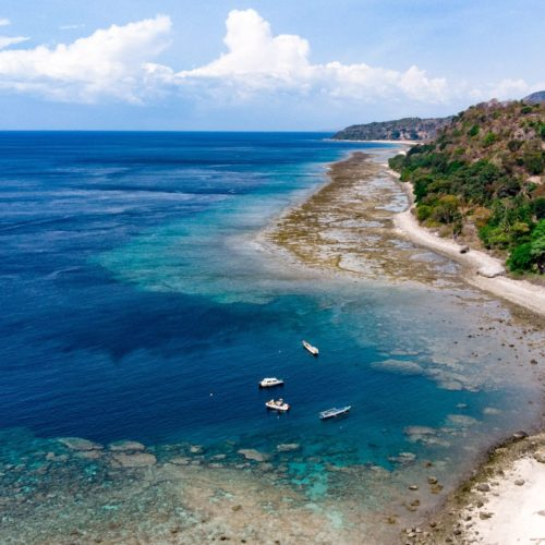 The Natural Wonders of Timor Leste