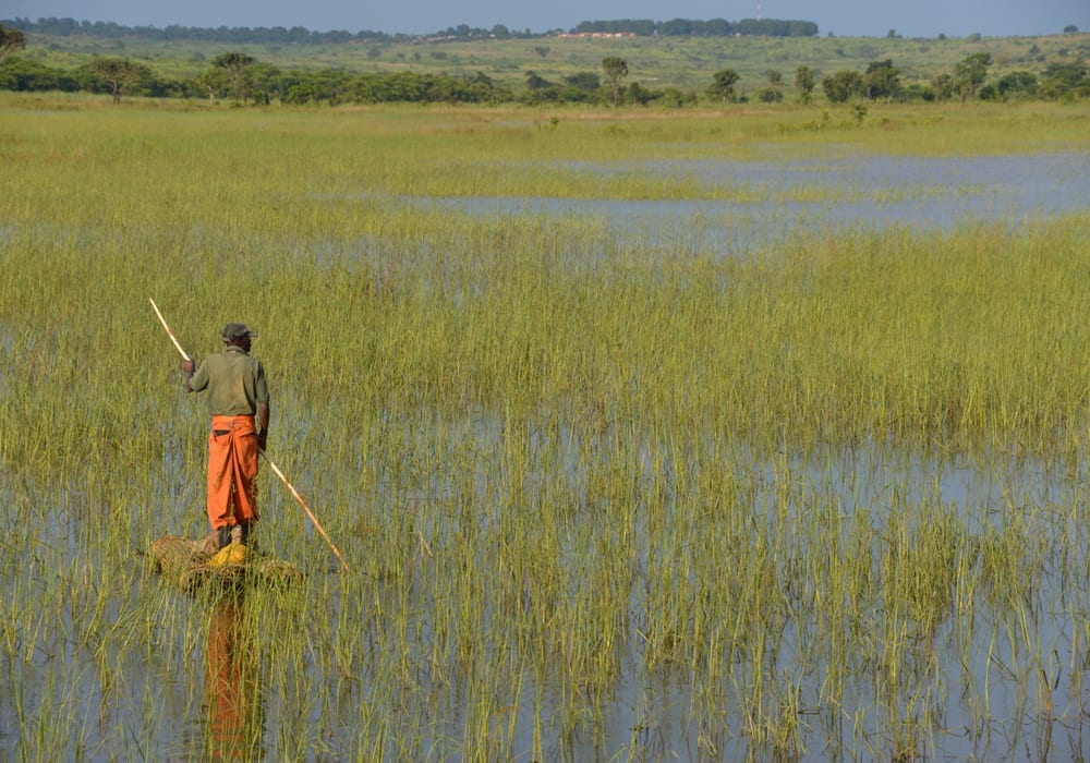 Angola Local Landscape Africa