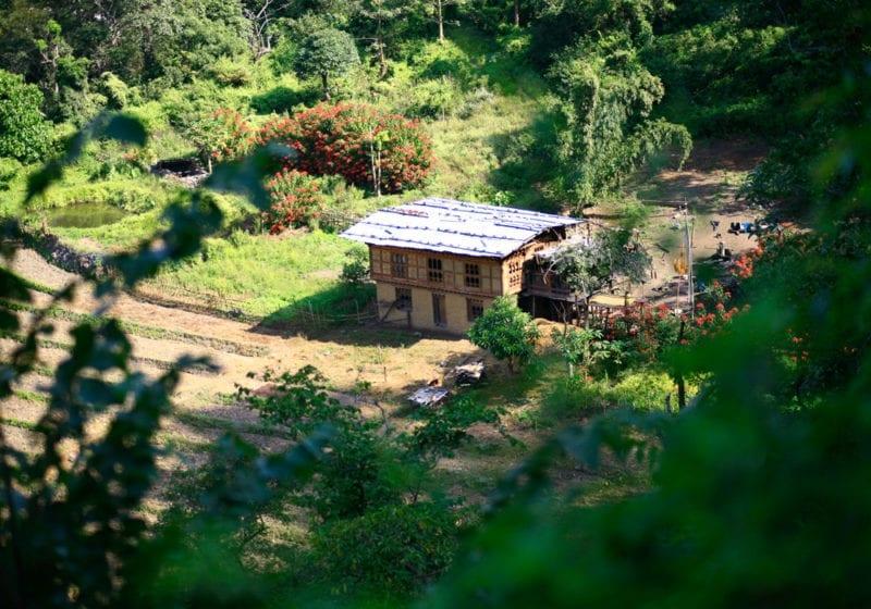 Fertile Valley in Bhutan
