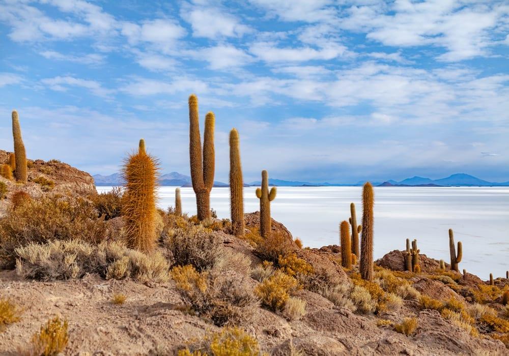 Salt Flats of Kachi Island in bolivia