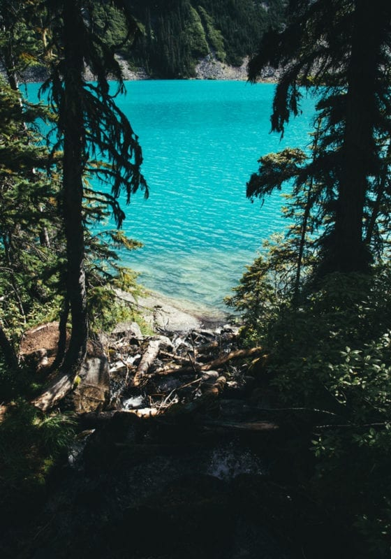 British Columbia Lake in the Forest in Canada