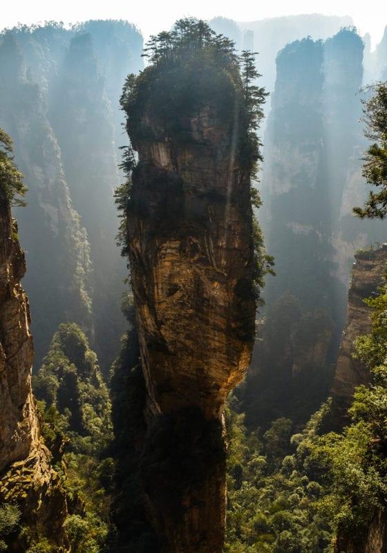 China Image GRid Dramatic Forest Landscape