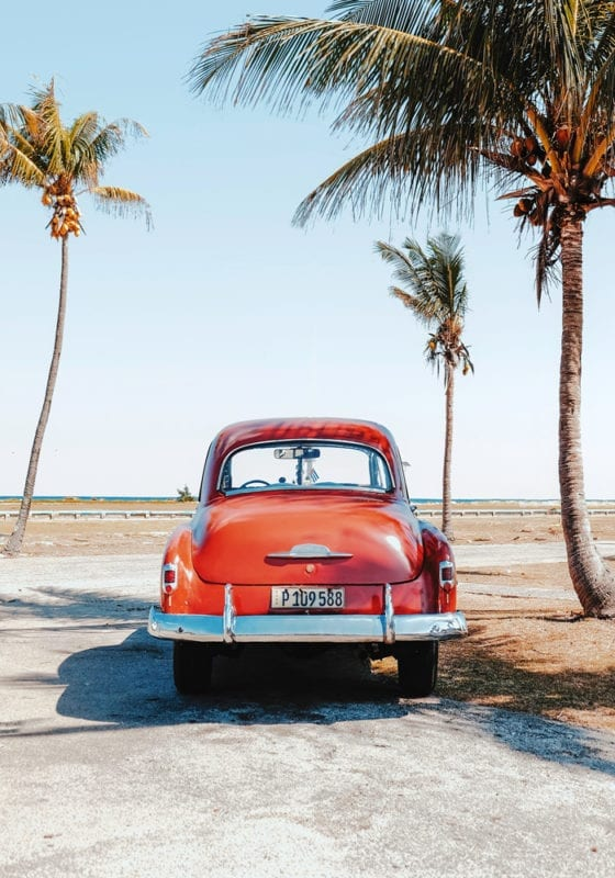 Old Fashioned Cars in Cuba under palm trees