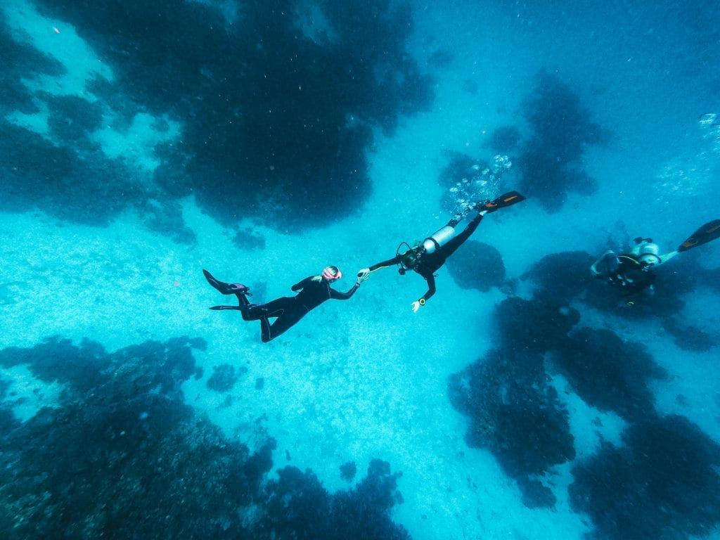 Honeymoon diving Raja