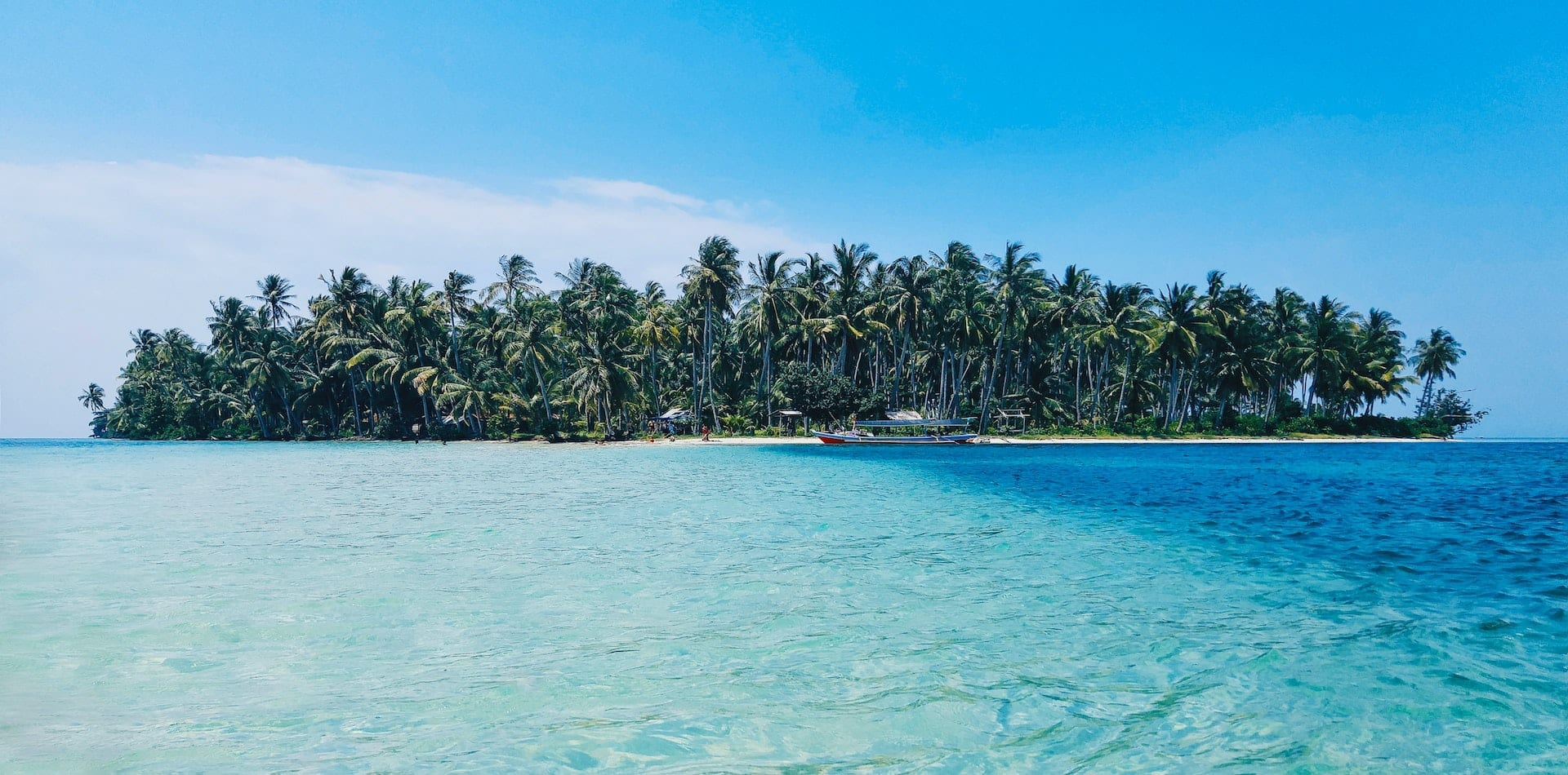 Remote and tropical palm tree island