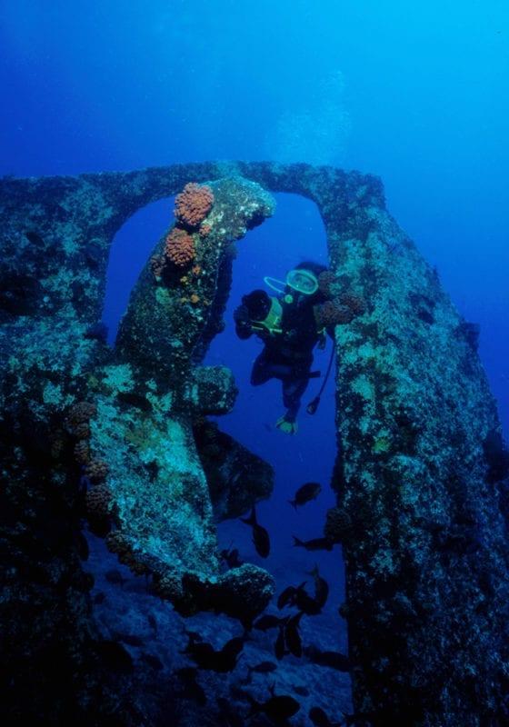 Scuba Diving Baja California