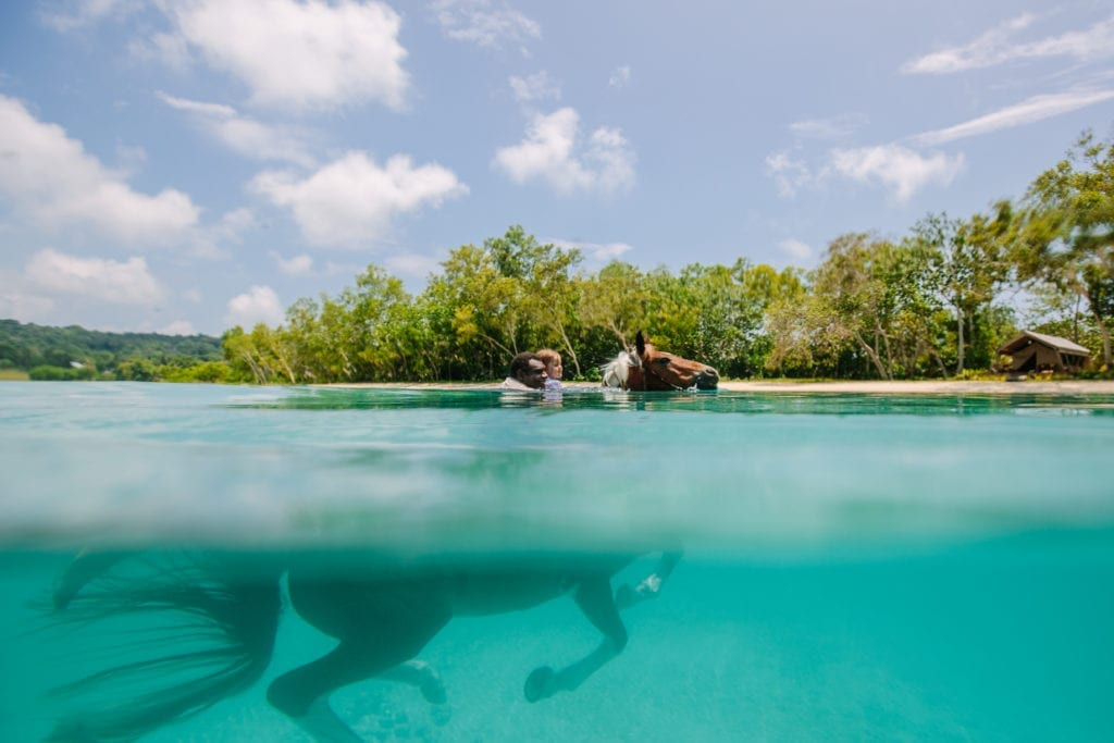 a guide and a child swimming with a horse in Vanuatu
