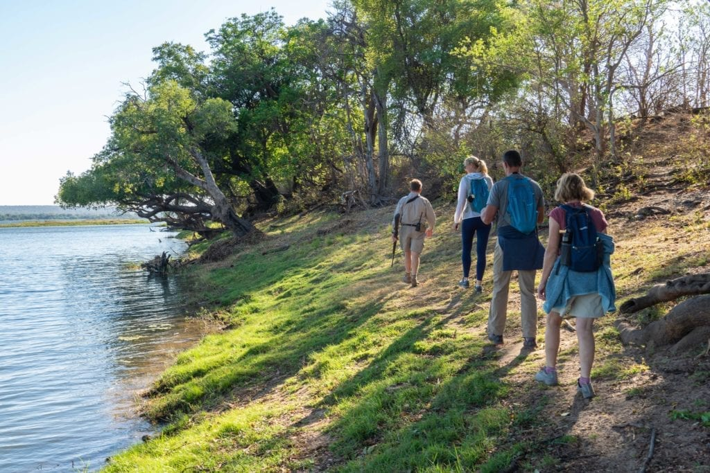 Walking safari along a river, Zimbabwe