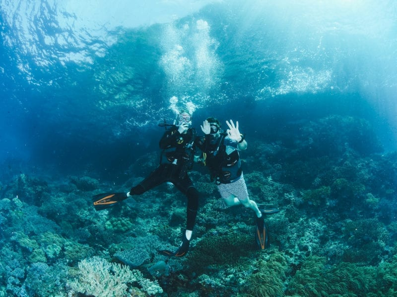 Jimmy and Thea Carroll Diving