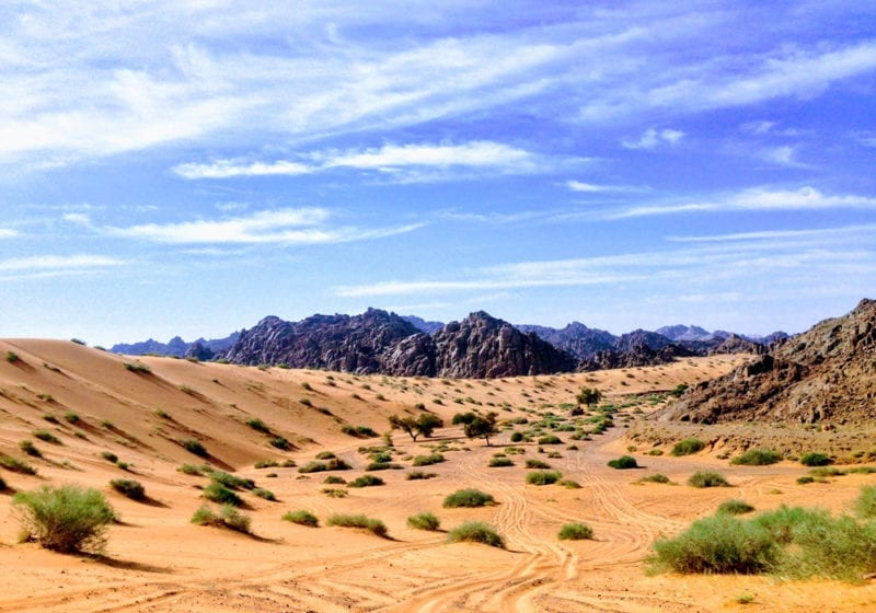 Saudi Arabia Desert Landscape