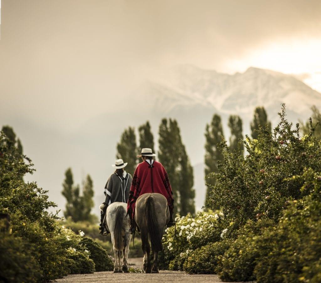 Horseback Riding in Argentina Landscape