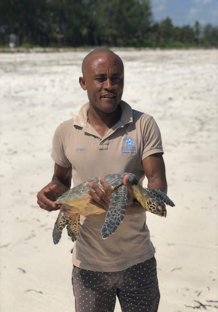 Kenya Turtle Conservation