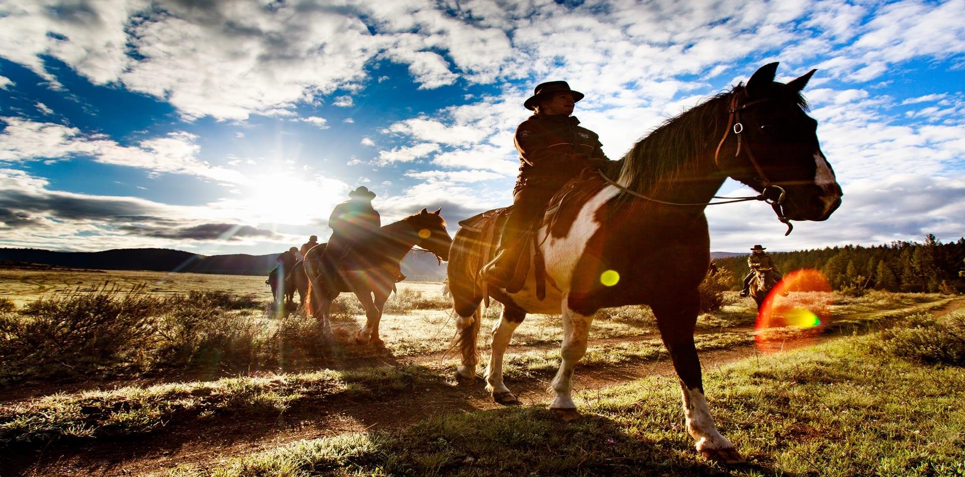 Montana Horse Riding Hero