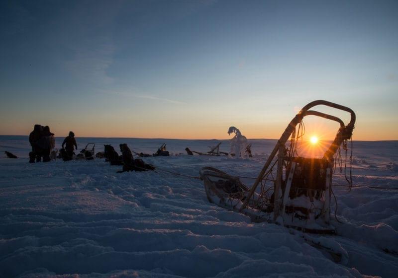 Norway Sunset Dog Sled
