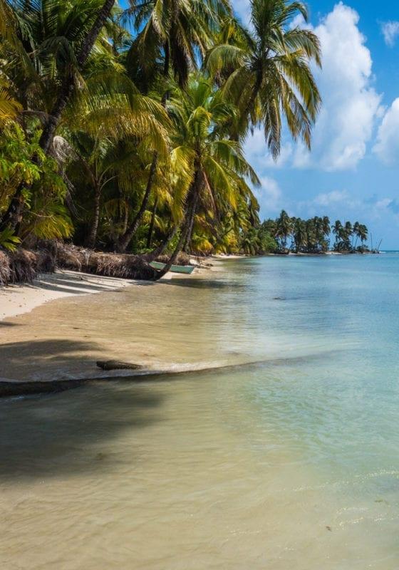 Palm Trees Beach Nicaragua