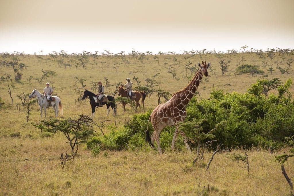 Horse Riding Safari Experience Kenya