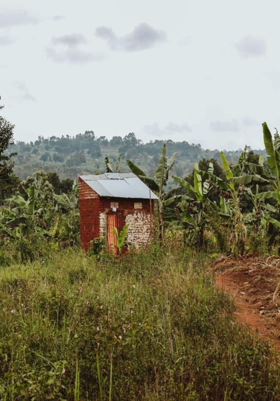 Uganda hut in the Banana Fields
