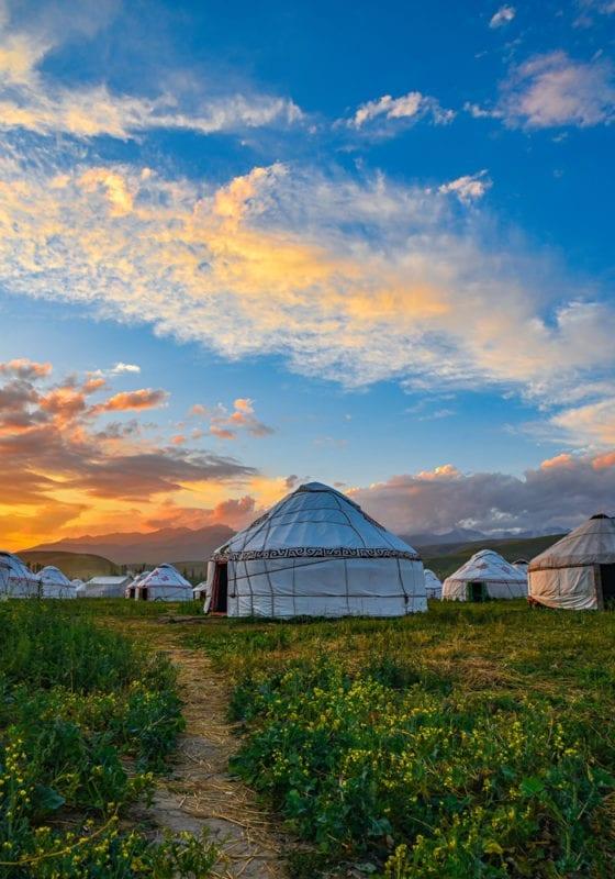 Yurt Mongolia Spring