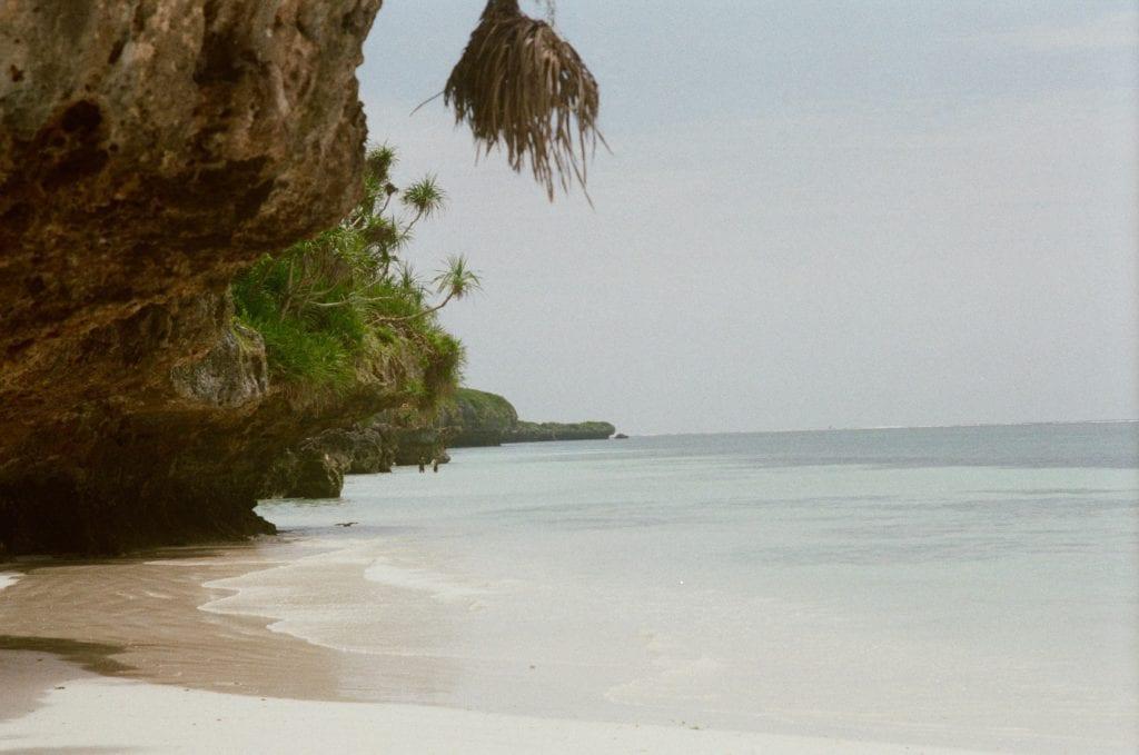 Coast of Zanzibar with Cliffs and Palm Trees Tanzania