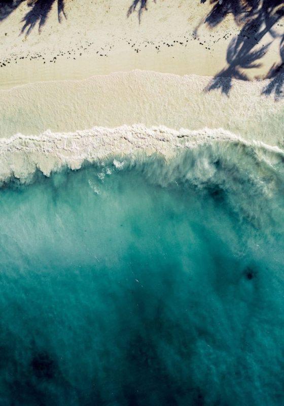 Aerial View of the Beach on the Coast of Zanzibar