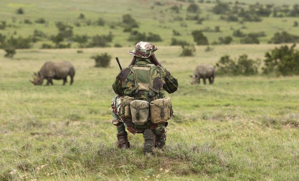 borana lodge kenya ranger rhino monitoring